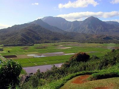 Hanalei Valley in Hawaii
