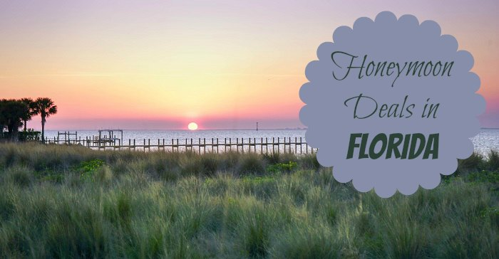 Honeymoon Deals in Florida
